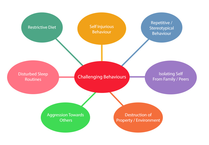 challenging behaviours 'challenging' behaviours are common among people with intellectual disabilities, resulting in significantly reduced quality of life these may include aggression, self-injury.